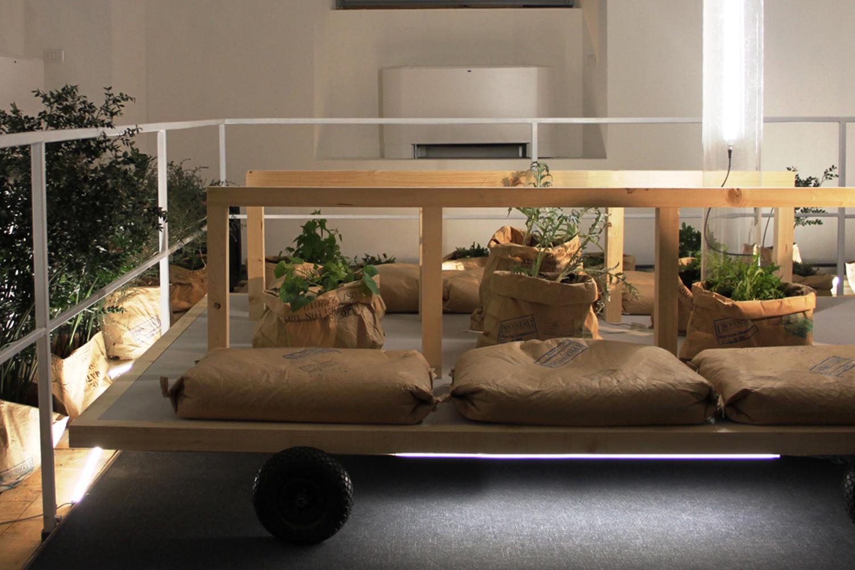 3_salamanca-design-sostenibility-experience-bio